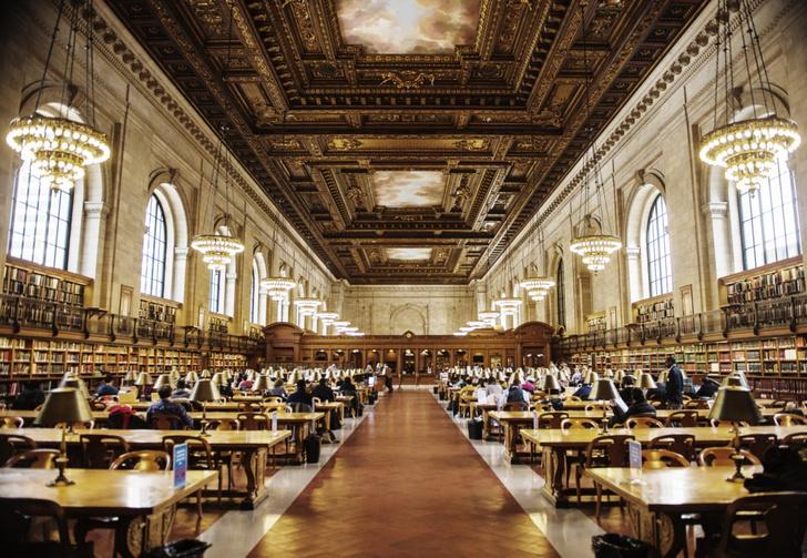 Самые потрясающие библиотеки мира (фото 34)