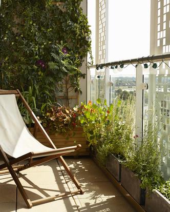 Задай вопрос эксперту: зимний сад на балконе (фото 5.1)