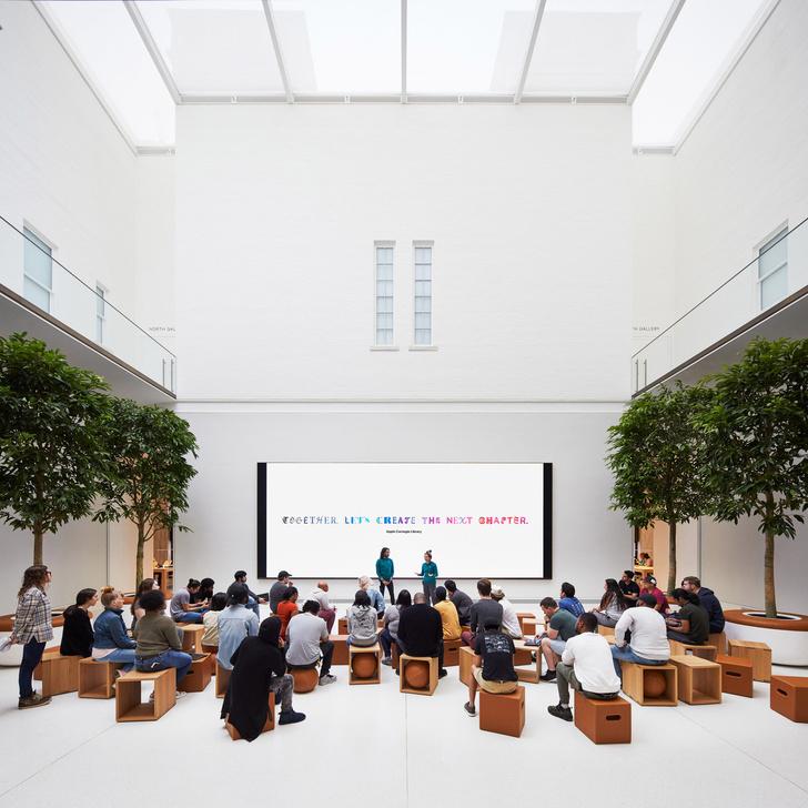 Новый Apple Store по проекту Foster + Partners в Вашингтоне (фото 15)