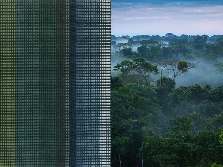 Природные ландшафты в новых коврах CC-Tapis (фото 2)