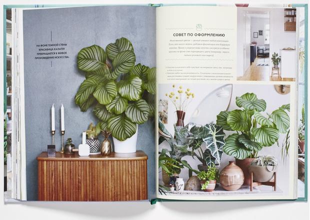 Выбор ELLE Decoration: книги июля (фото 2)