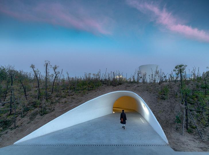 Необычная арт-галерея в песчаной дюне в Китае (фото 0)