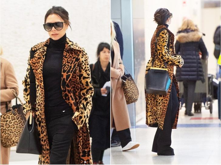 Как носить леопард: новый выход Виктории Бекхэм (фото 1)