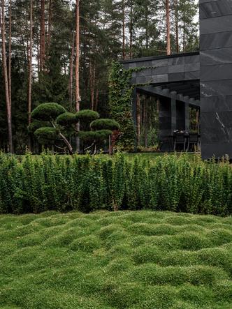 Современный дом  4500 м² с красивым садом на Новой Риге: проект бюро Woodstone (фото 2)