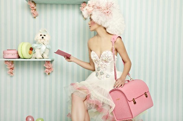 Модная одежда и аксессуары для собак и кошек
