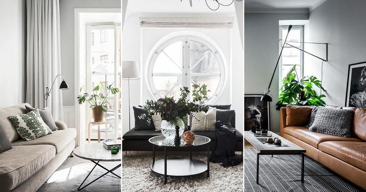 Как создать уютную гостиную: 7 простых приемов (фото 0)