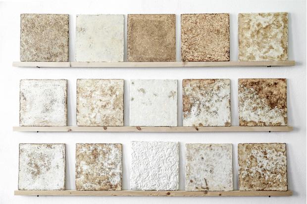 Живая материя: революционный дизайн из мира науки (фото 31)