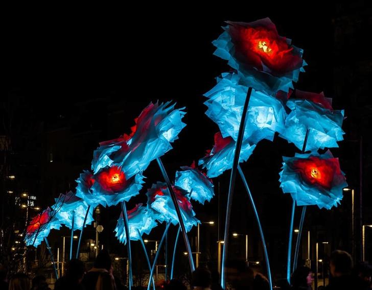 Фестиваль света Llum BCN 2019 в Барселоне: лучшие инсталляции (фото 35)