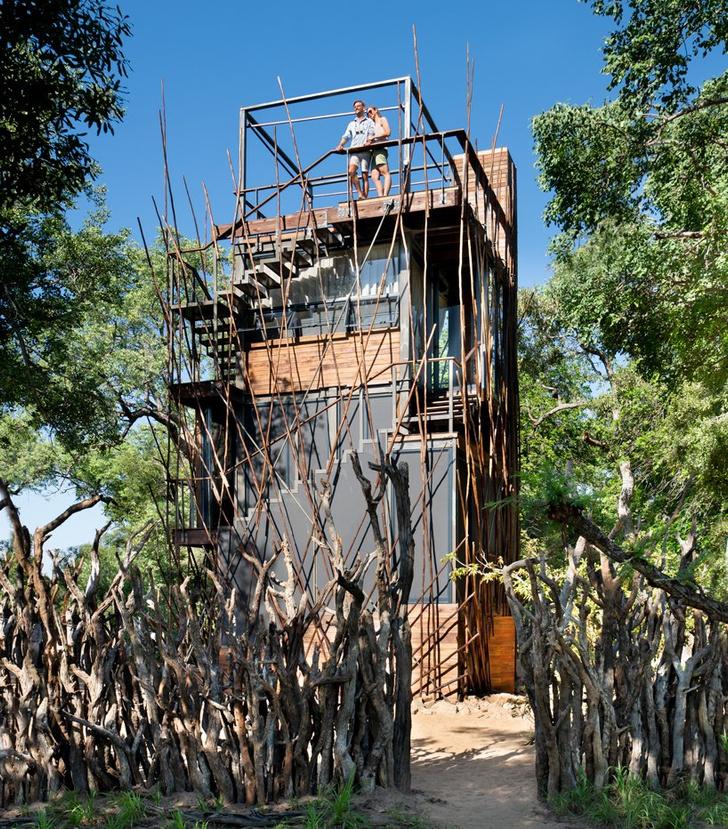 Отель на дереве (фото 3)