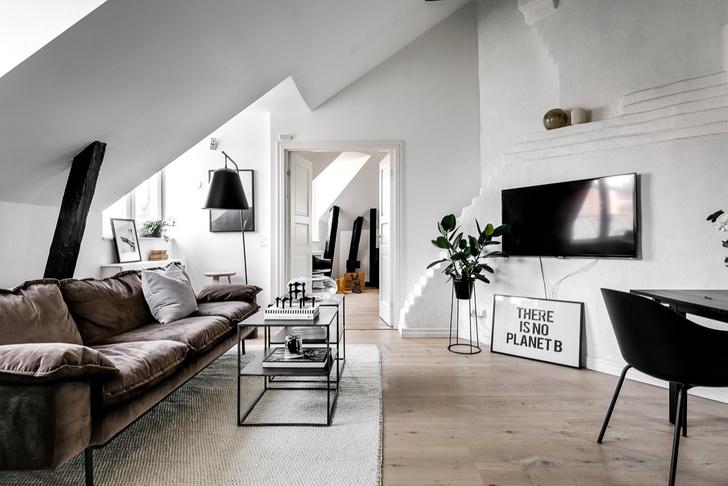 Под крышей дома: квартира модного блогера в Стокгольме (фото 3)