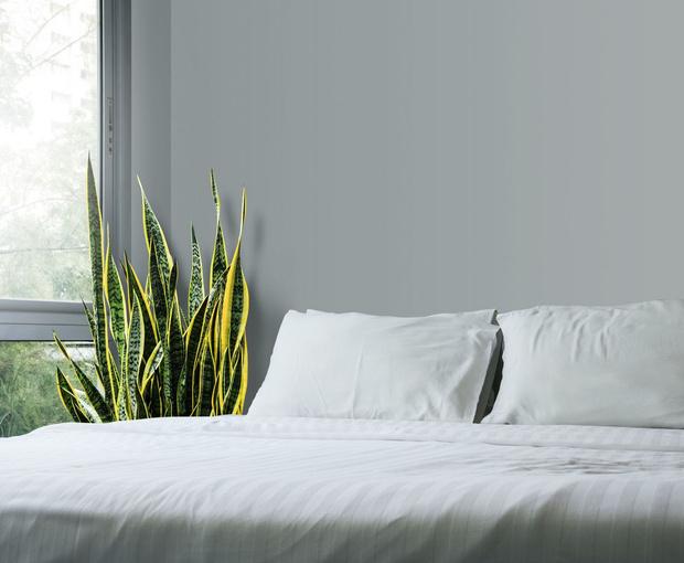 Спальня по фэн-шуй: 12 вдохновляющих идей (фото 16)