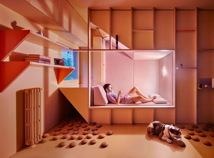 Квартира 46 м²для молодого врача и его бульдога в Мадриде (фото 0)