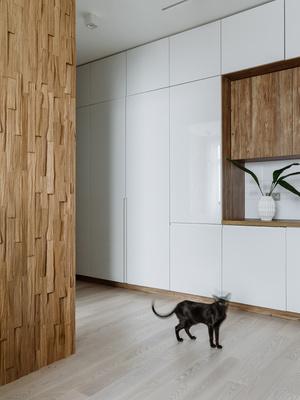 Квартира с двумя котиками для врача-ветеринара (фото 7.2)