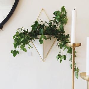 Модные кашпо и мебель для домашних растений (фото 8.2)