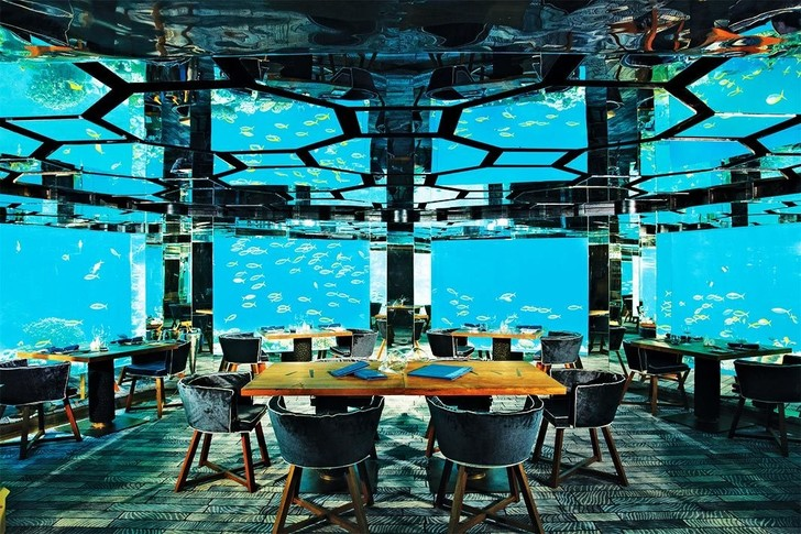 Полное погружение: топ-10 лучших подводных ресторанов (фото 1)