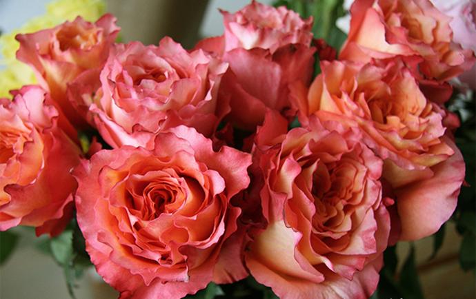 Модный букет: советы флориста 7