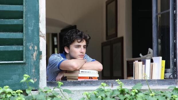Самый юный номинант на «Оскар»: что нужно знать о Тимоти Шаламе? (фото 8)