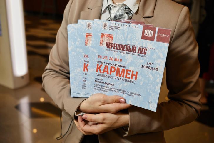 Открытие театральной программы фестиваля «Черешневый лес» (фото 3)