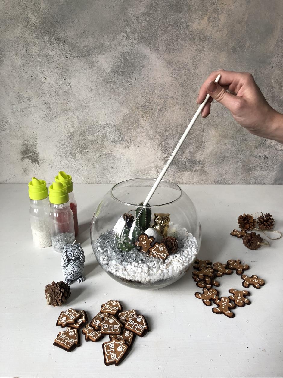 Как сделать зимний флорариум своими руками (фото 15)