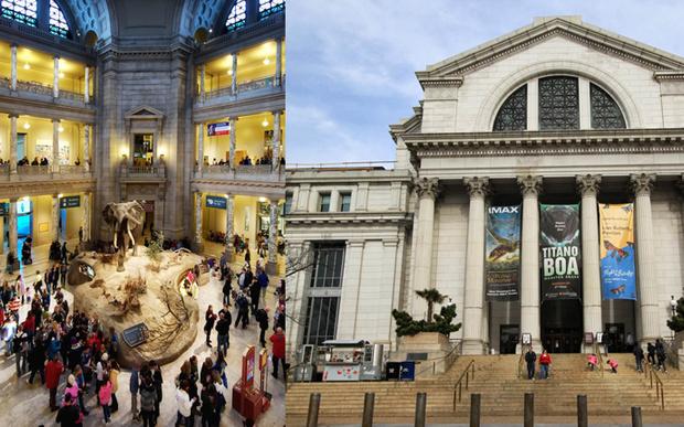 Национальный музей естественной истории / National Museum of Natural History