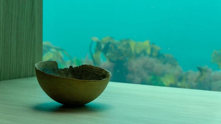 Посуда для подводного ресторана Under от студии Ment (фото 0)