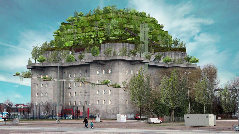 Пятый фасад: зеленые крыши (галерея 35, фото 2)