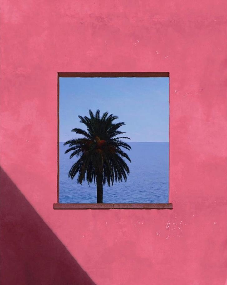 Инстаграм недели: розовое лето Андрия Дариуса Панкрази (фото 9)
