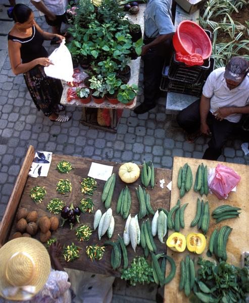 Ромовый дневник: лучшее на Сейшелах | галерея [3] фото [4]