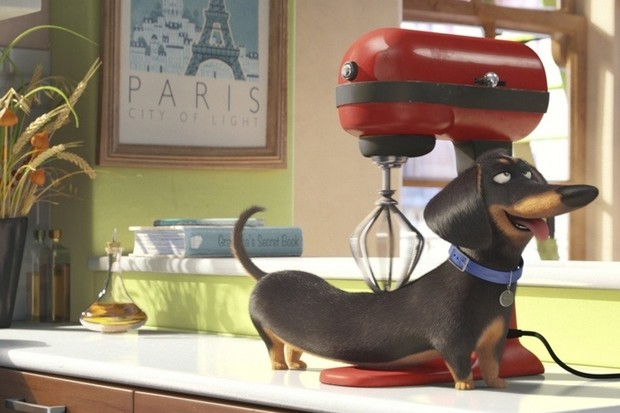 «Тайная жизнь домашних животных» (The Secret Life of Pets)