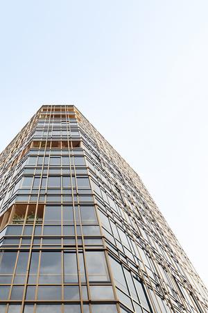 Nendo + Ikawaya Architects: офисное здание в Токио (фото 2.1)