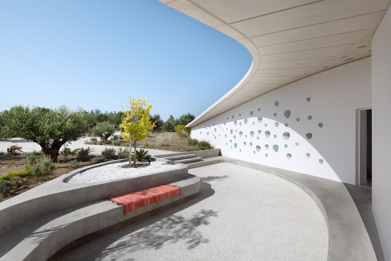 Пятый фасад: зеленые крыши (галерея 31, фото 2)