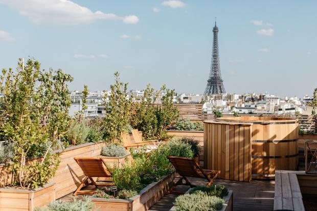 Brach: новый отель Филиппа Старка с видом на Эйфелеву башню (фото 4)