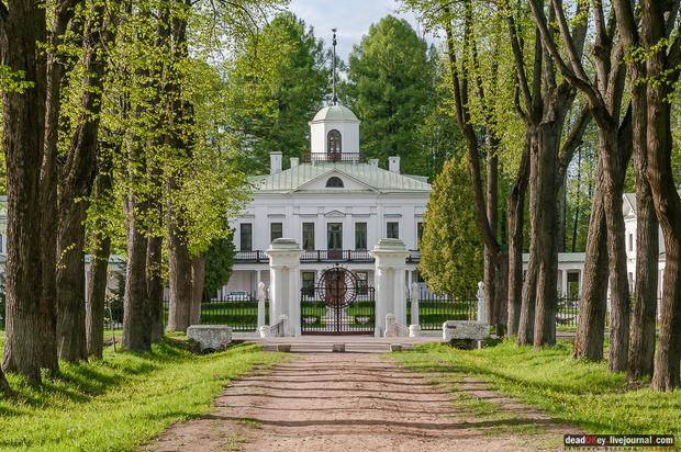 13 мест, которые стоит посетить в Подмосковье (фото 12)