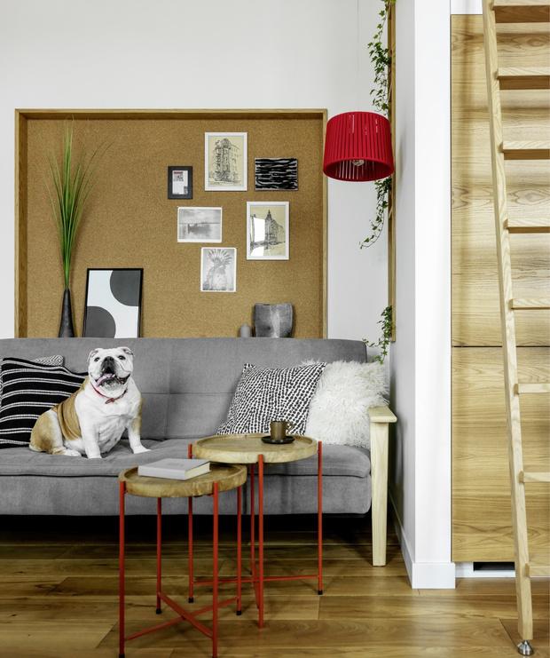 Маленькая квартира для семьи с двумя детьми в Санкт-Петербурге (фото 0)