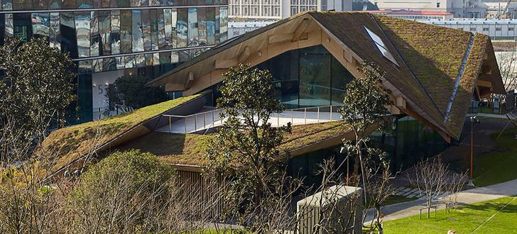 Пятый фасад: зеленые крыши (фото 25)