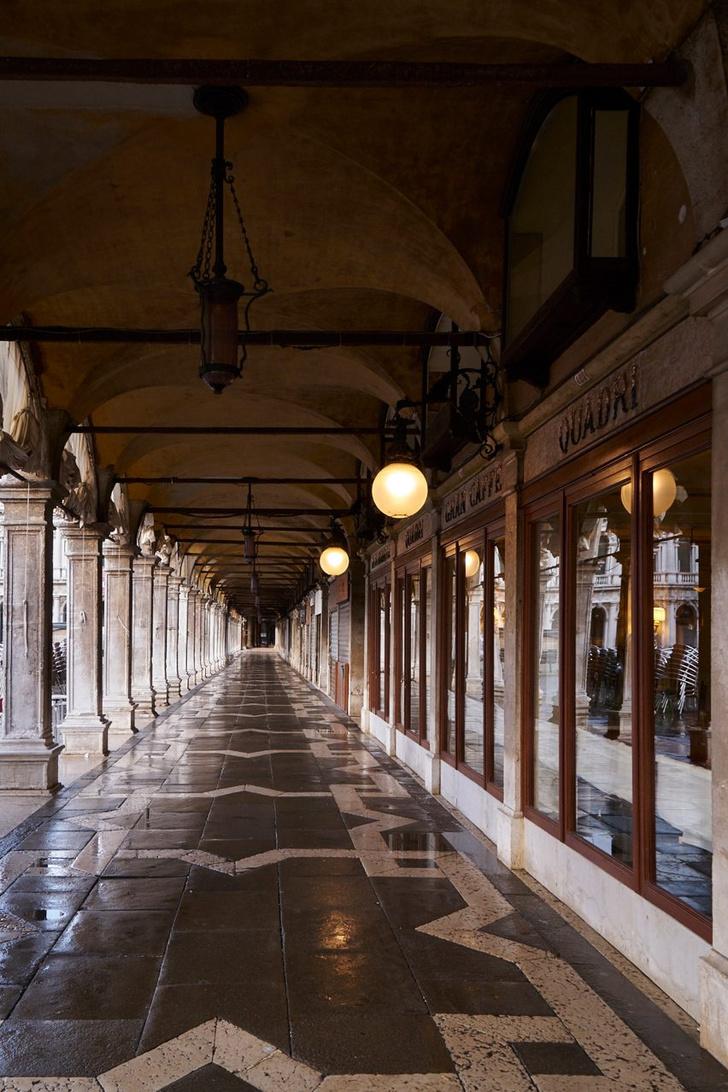 Новый ресторан с интерьером от Филиппа Старка в Венеции (фото 1)