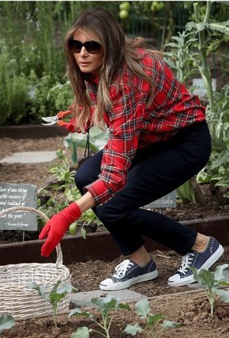 Мелания Трамп разбила огород на территории Белого дома фото [8]