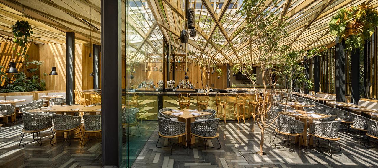 Дерево и стекло: современный ресторан в Мехико (галерея 5, фото 2)