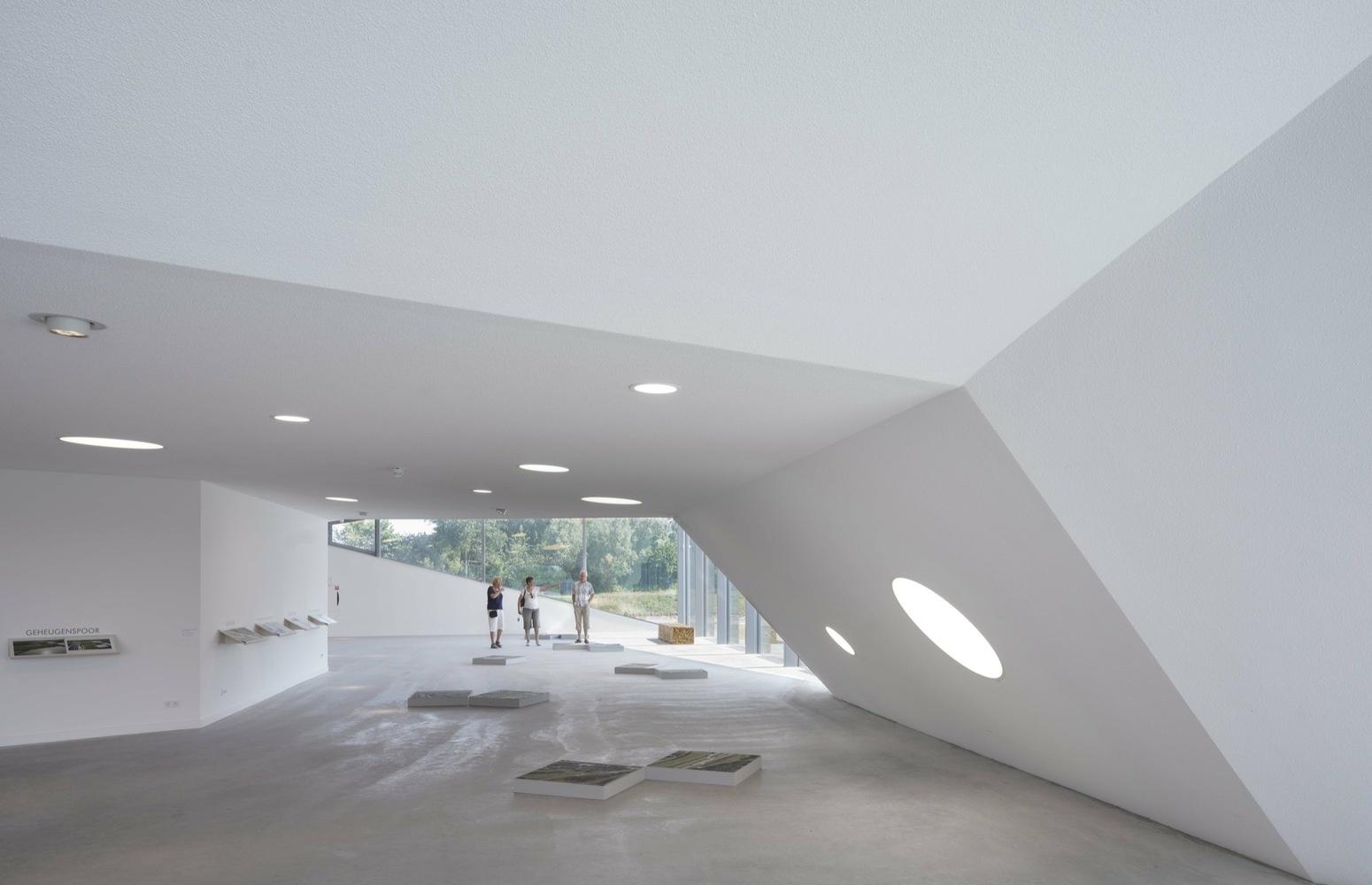 Пятый фасад: зеленые крыши (галерея 7, фото 5)