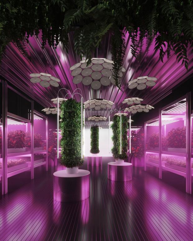 RHS Chelsea Flower Show 2019: сад будущего Тома Диксона и ИКЕА (фото 0)