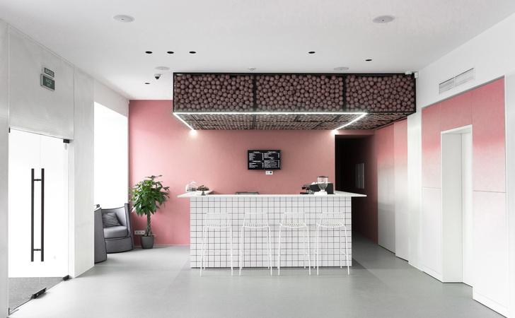 Современный образовательный центр с розовыми акцентами (фото 0)