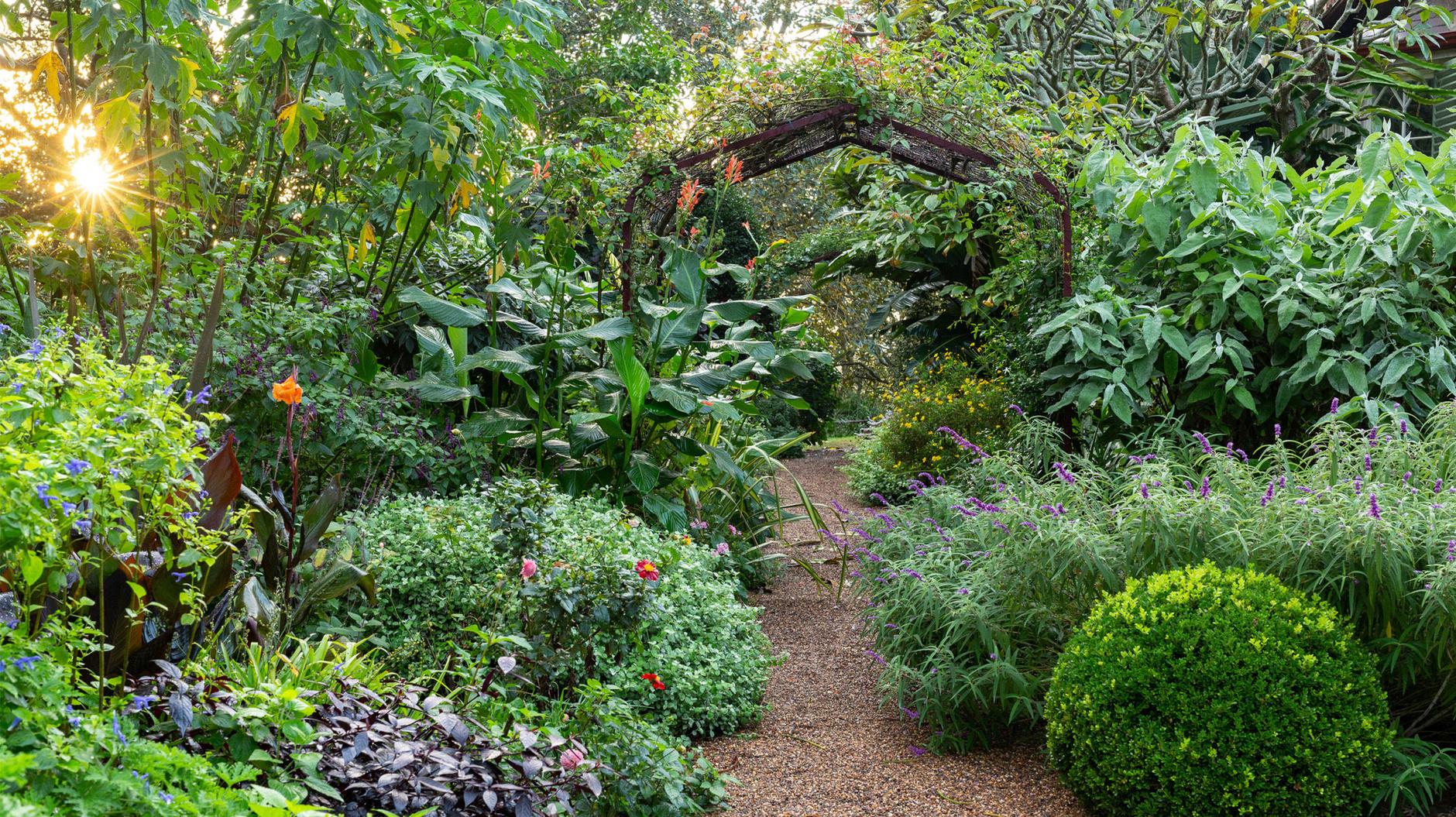 Садовые дорожки: практичные советы (галерея 6, фото 2)