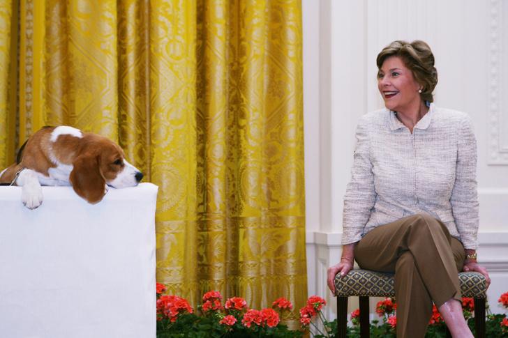 Портреты первых леди США в интерьерах Белого дома