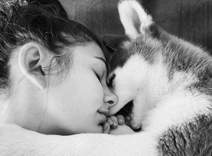 Лео, прости, но ее сердце отдано другому: невеста Ди Каприо взяла щенка из приюта (фото 3)