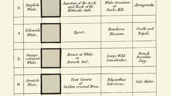 Классификатор цветов XIX века (фото 11)