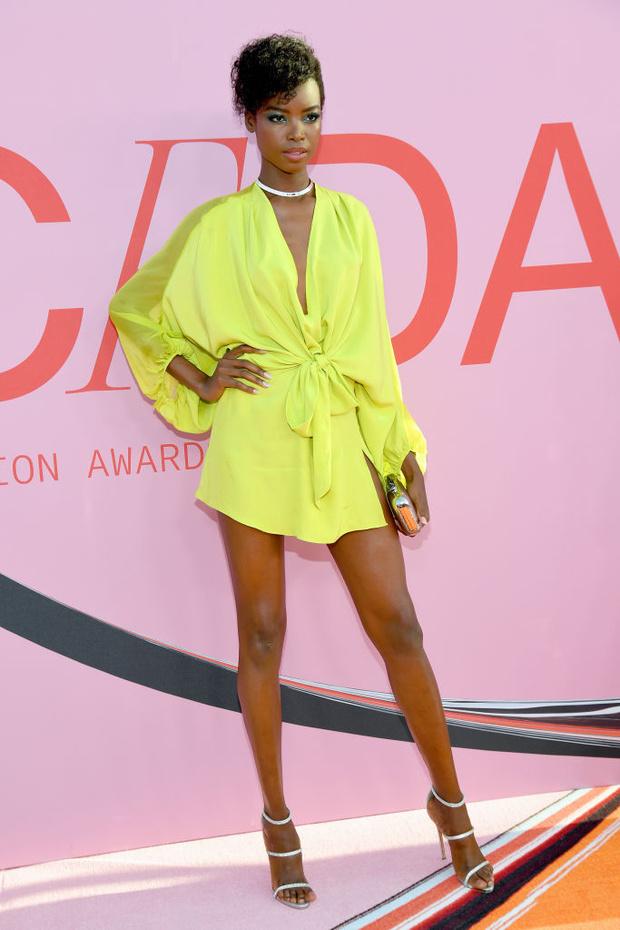 Сенсационно: 23 сексуальные супермодели на премии CFDA Fashion Awards (фото 19)