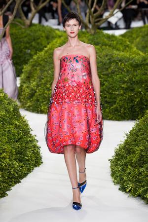 Показ Christian Dior коллекции сезона Весна-лето 2013 года Haute couture - www.elle.ru - Подиум - фото 477464