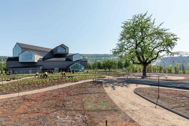 Сад Пита Удольфа на кампусе Vitra (фото 2)