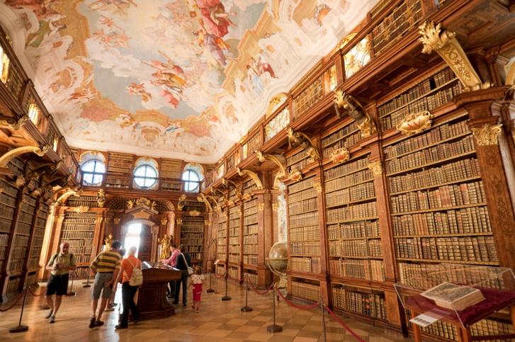 Самые потрясающие библиотеки мира (фото 65)