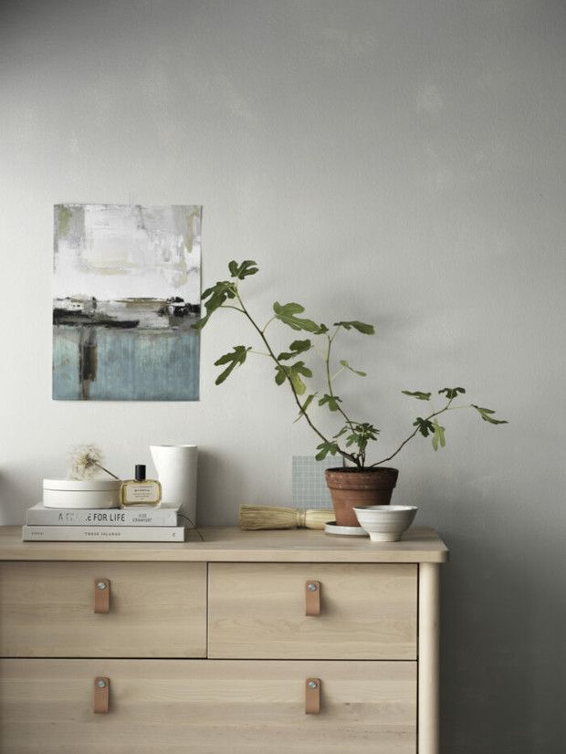 Новое растение в доме: 11 советов (фото 30)